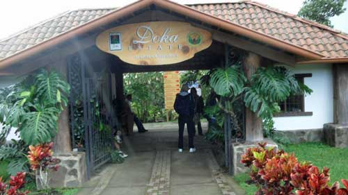 entrance-doka-plantation