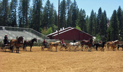 mother-lode-horse-show-20