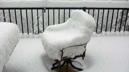 Snow storm came during the night and decided to have seat.