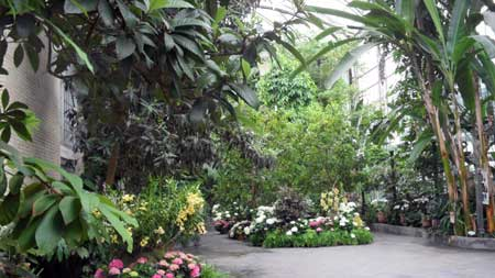 Dc Botanical Gardens Hours The Function Of Botanical Garden Front Yard Landscaping Ideas