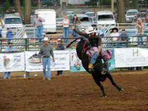Tickets are on sale now for the Donny Martin Memorial Bull Riding event and the Professional Rodeo, both taking place at next week's Nevada County Fair.  Photo credit: Nevada County Fair.