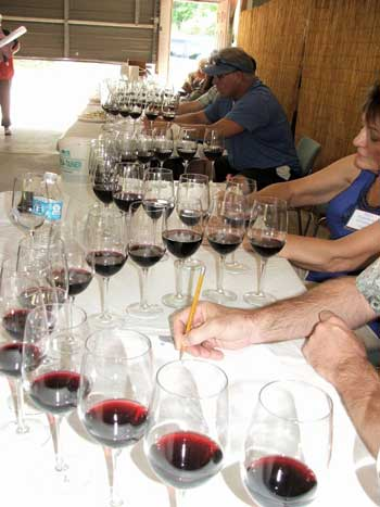 Judging wine at the Sacramento Home Winemakers June Jubilee
