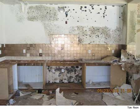Photo credit: Tom Moon ; http://realestate.aol.com/blog/2011/02/04/worst-foreclosed-home-vandalism-ever/